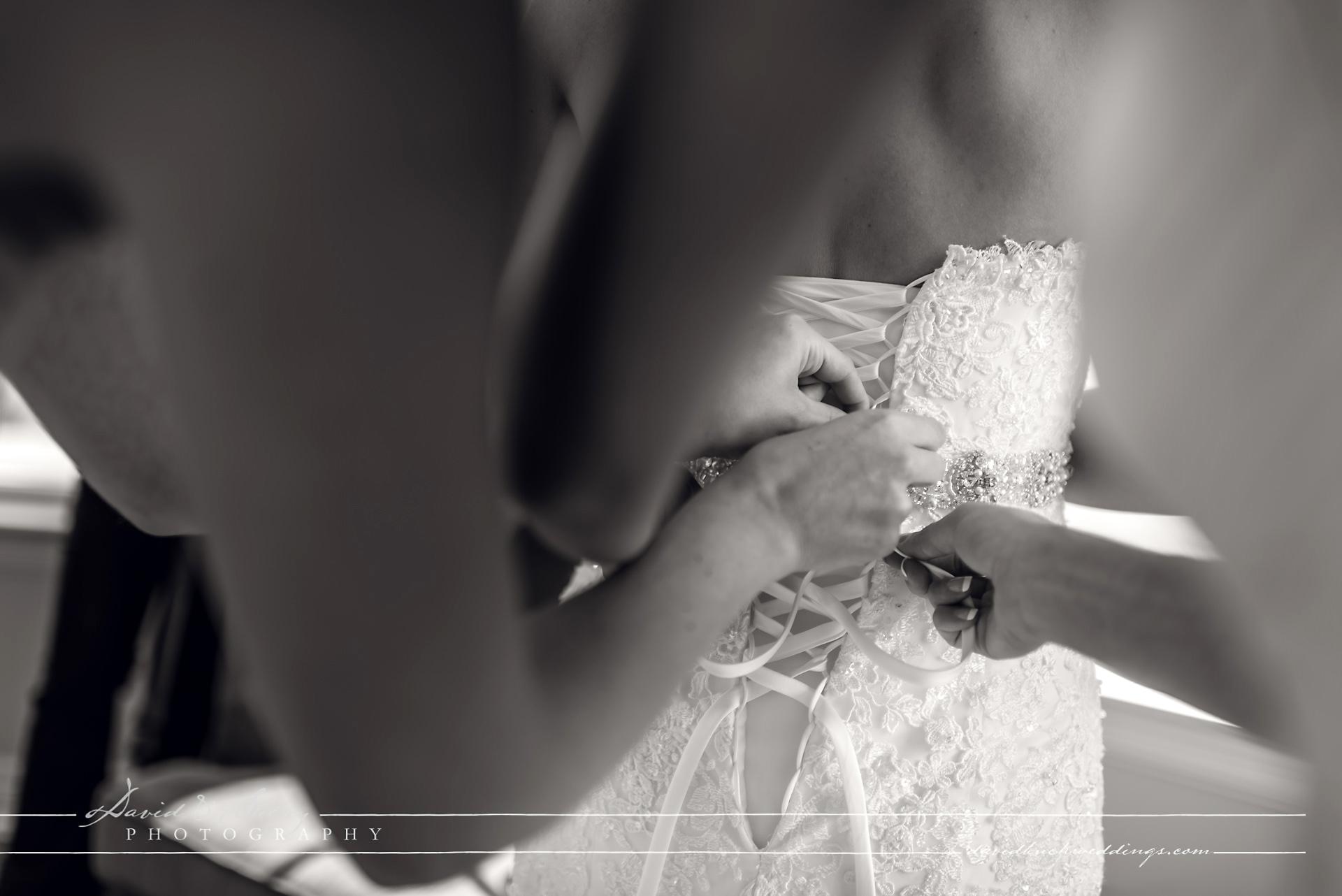 Cobble_Beach_Wedding_Photography_008