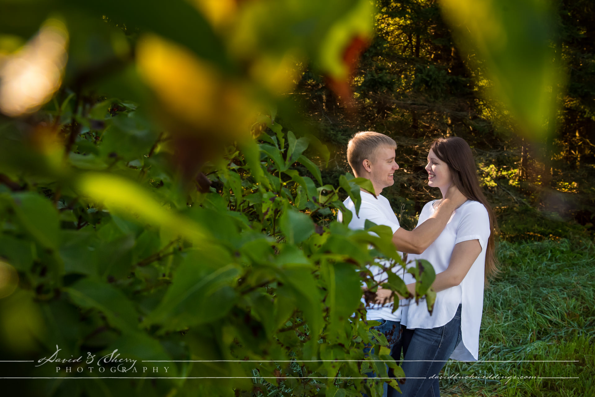 Owen_Sound_Engagement_Photos_011