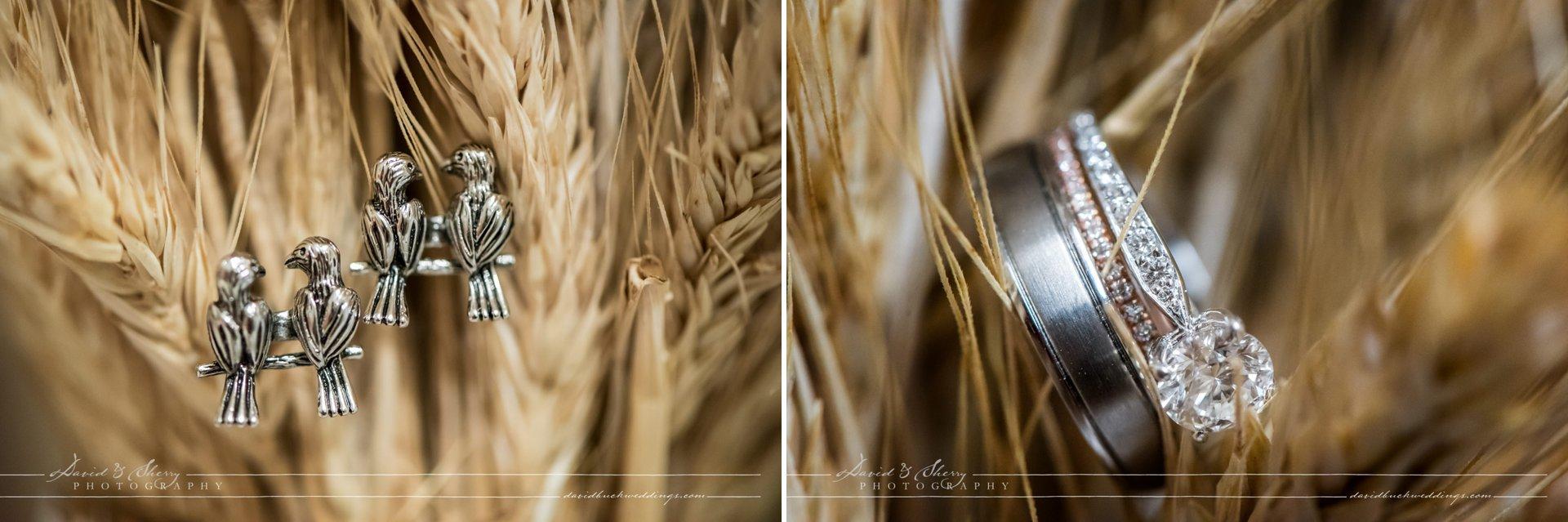 waterstone-estate-wedding-david-sherry-photography-simon-crystal-002