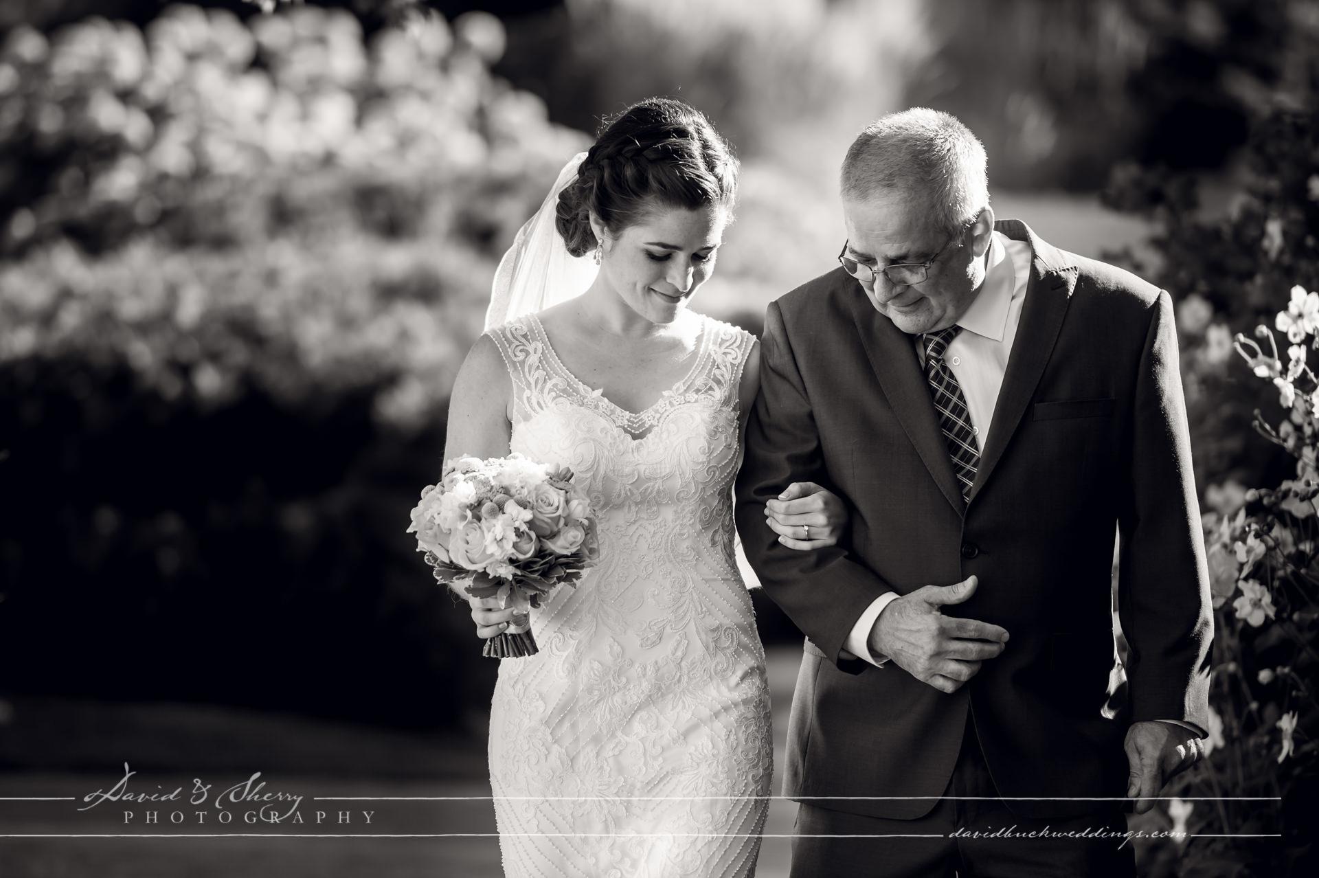 lora-bay-wedding-011