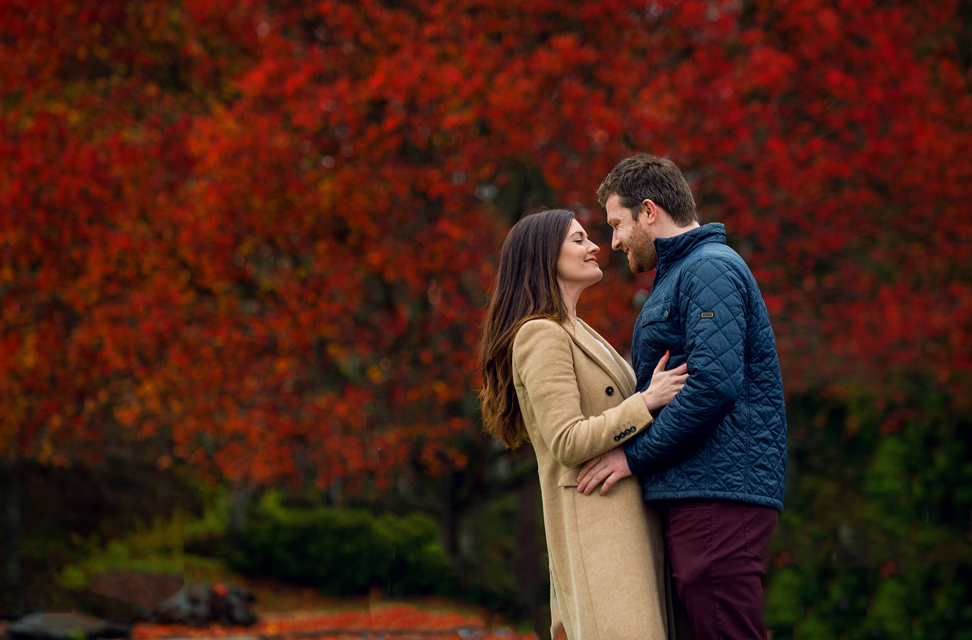 Pre-Wedding Photos in Stanley Park in the Fall