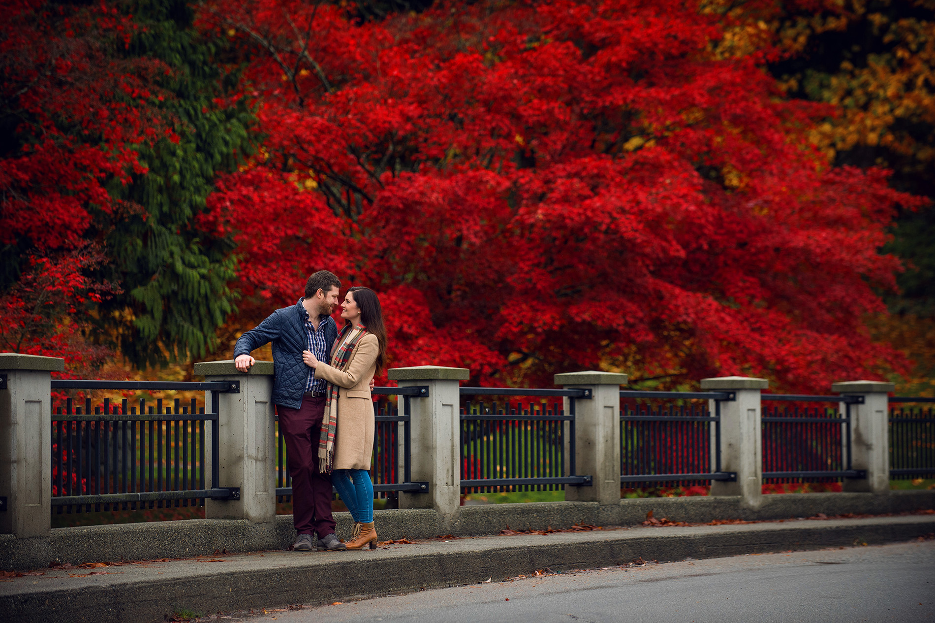 Peak Fall Colours in Stanley Park for Engagement Photos